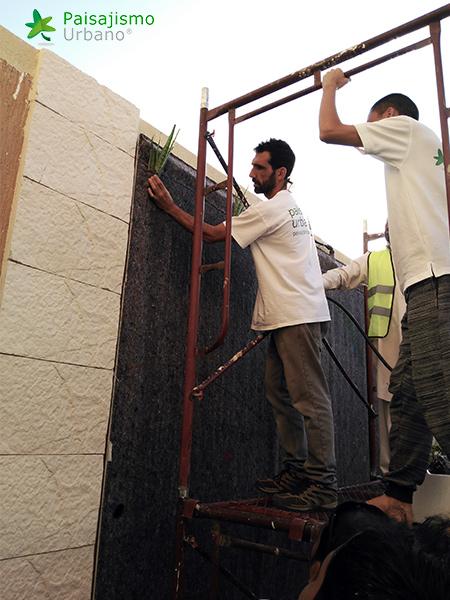 img-jardines-verticales-arabia-residencia-privada-3