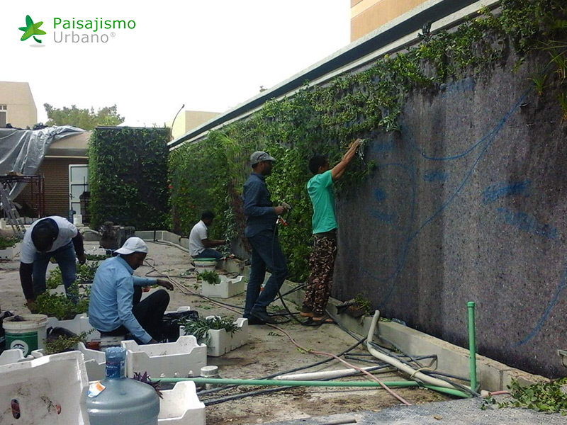 img-jardines-verticales-arabia-residencia-privada-7