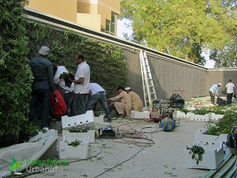 img-jardines-verticales-arabia-residencia-privada-8