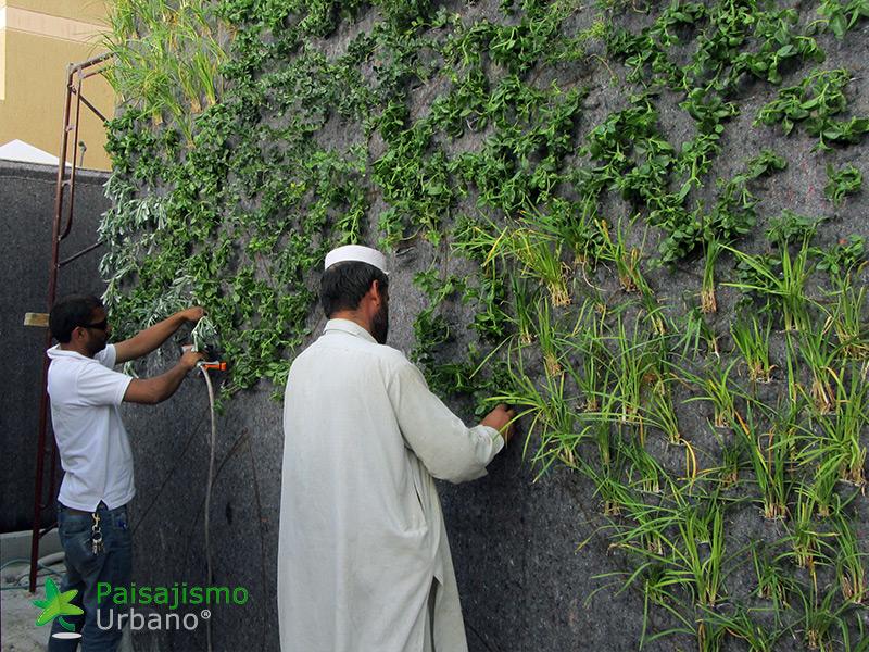img-jardines-verticales-arabia-residencia-privada-9