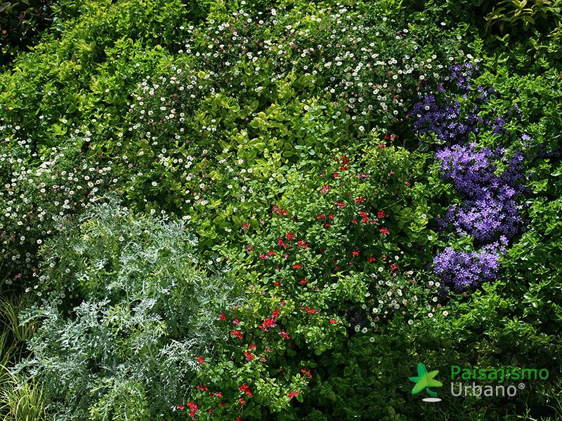 img-jardines-verticales-banquetes-indalo-elda-13