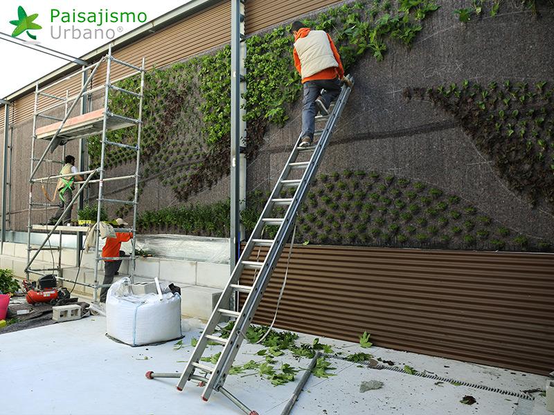 img-jardines-verticales-banquetes-indalo-elda-4