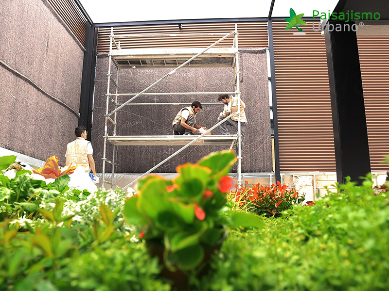 img-jardines-verticales-banquetes-indalo-elda-7