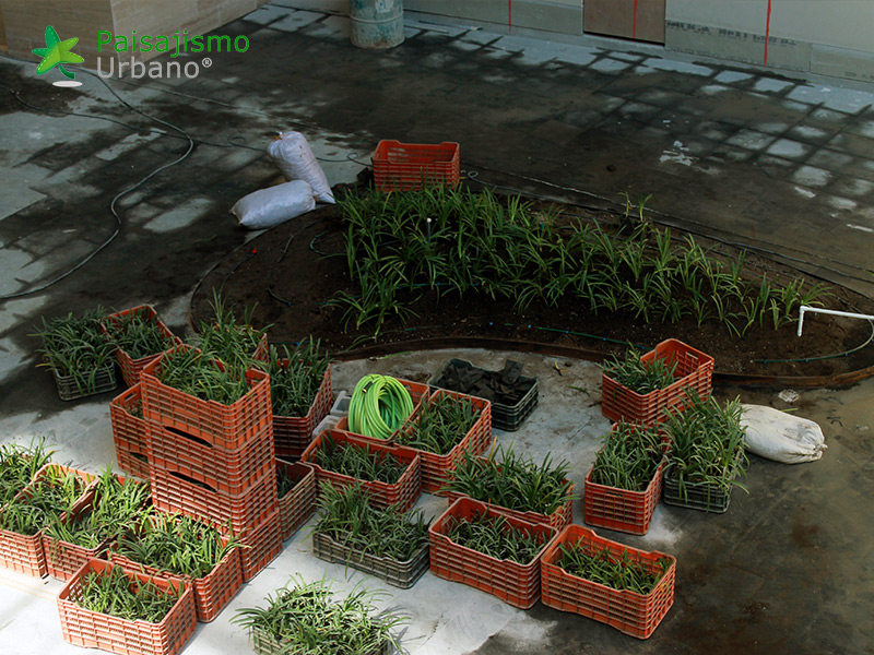 img-jardines-verticales-centro-comercial-oackland-mall-guatemala-2