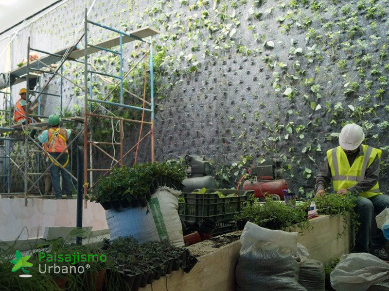 img-jardines-verticales-centro-comercial-oackland-mall-guatemala-3