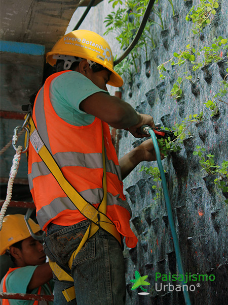 img-jardines-verticales-centro-comercial-oackland-mall-guatemala-5