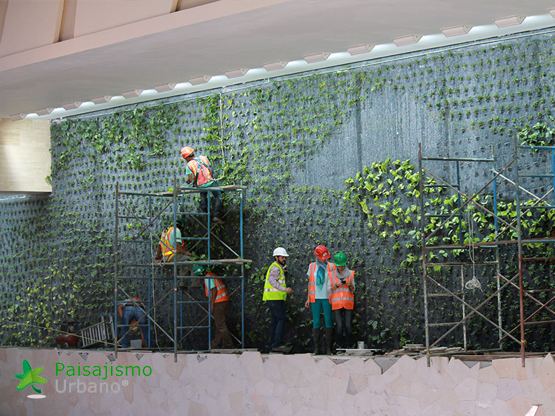 img-jardines-verticales-centro-comercial-oackland-mall-guatemala-6