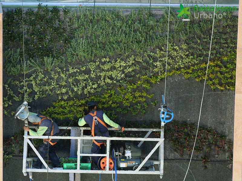 img-jardines-verticales-centro-comercial-quito-ecuador-13