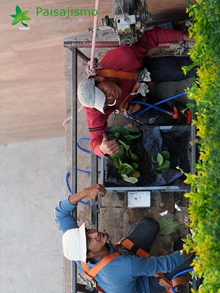 img-jardines-verticales-centro-comercial-quito-ecuador-14