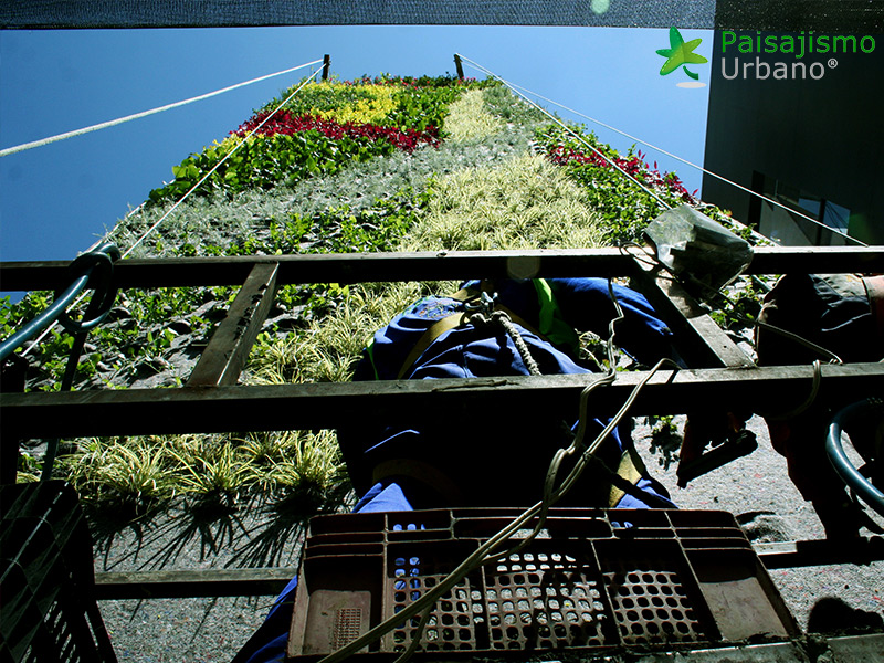 img-jardines-verticales-confederacion-empresarios-cochabamba-bolivia-12
