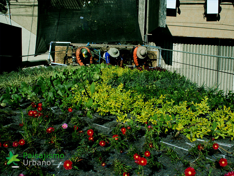 img-jardines-verticales-confederacion-empresarios-cochabamba-bolivia-13