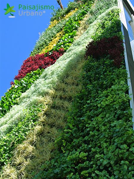 img-jardines-verticales-confederacion-empresarios-cochabamba-bolivia-18