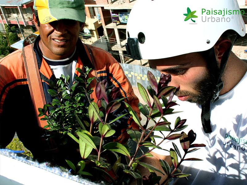 img-jardines-verticales-confederacion-empresarios-cochabamba-bolivia-5