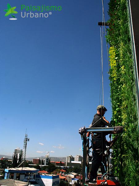 img-jardines-verticales-confederacion-empresarios-cochabamba-bolivia-8