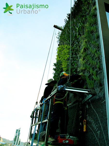 img-jardines-verticales-confederacion-empresarios-cochabamba-bolivia-9
