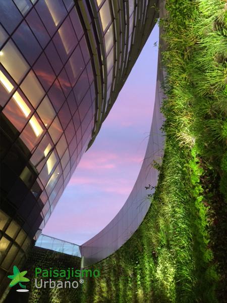 img-jardines-verticales-edificio-celebra-uruguay-22