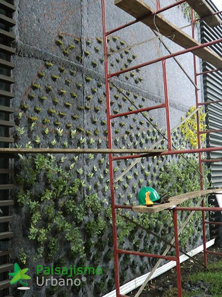 img-jardines-verticales-edificio-la-rioja-colombia-5