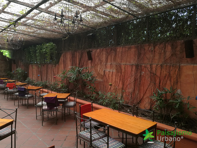 img-jardines-verticales-guatemala-restaurante-hacienda-real-1