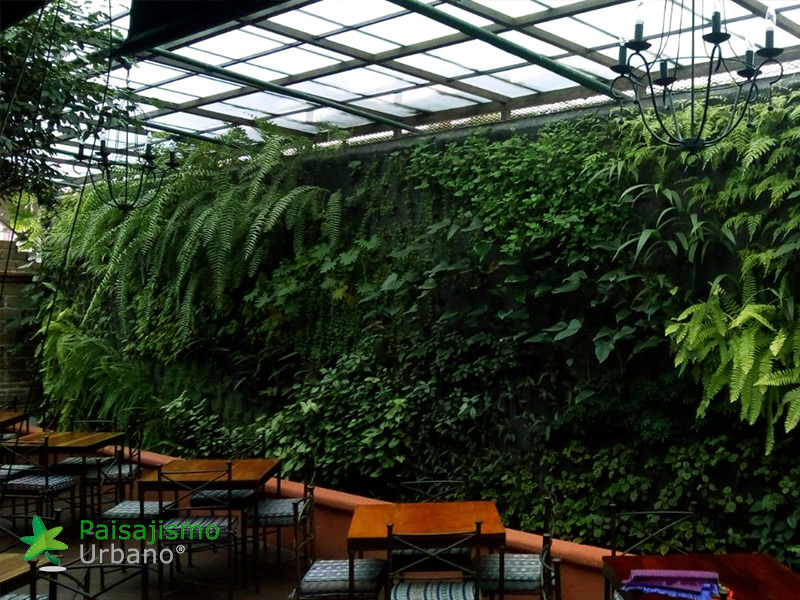 img-jardines-verticales-guatemala-restaurante-hacienda-real-10