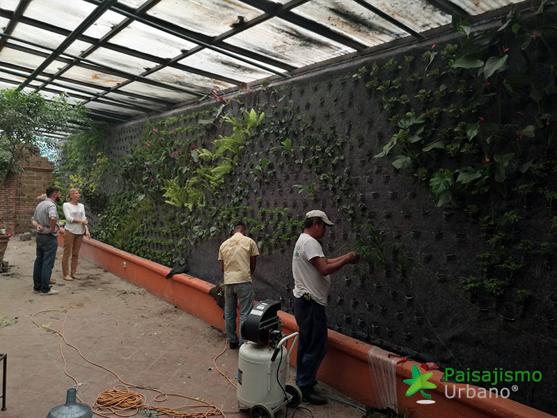 img-jardines-verticales-guatemala-restaurante-hacienda-real-5