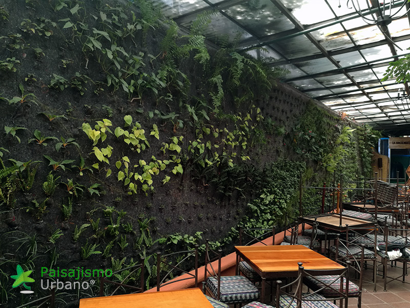 img-jardines-verticales-guatemala-restaurante-hacienda-real-7