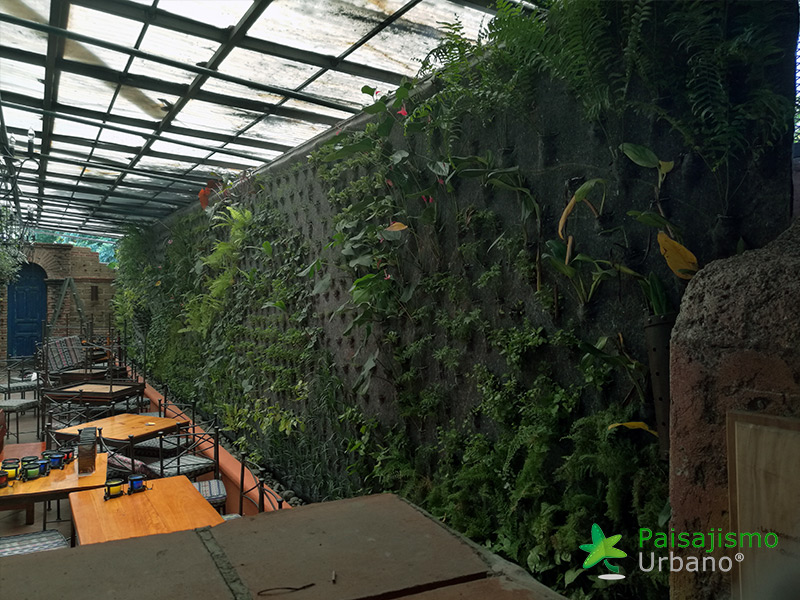 img-jardines-verticales-guatemala-restaurante-hacienda-real-8