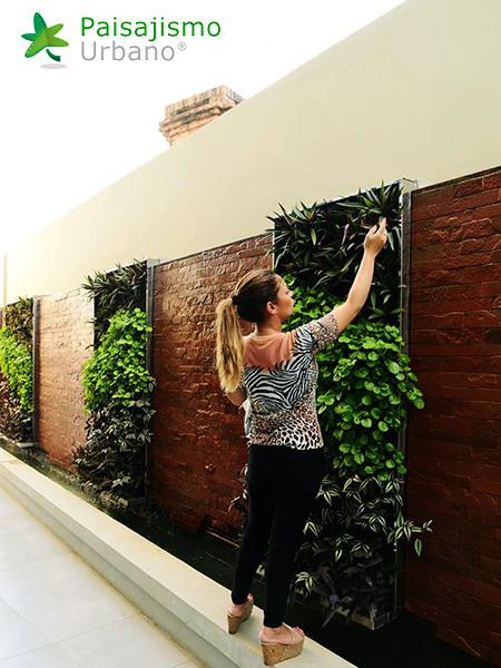 img-jardines-verticales-hotel-aloft-paraguay-1
