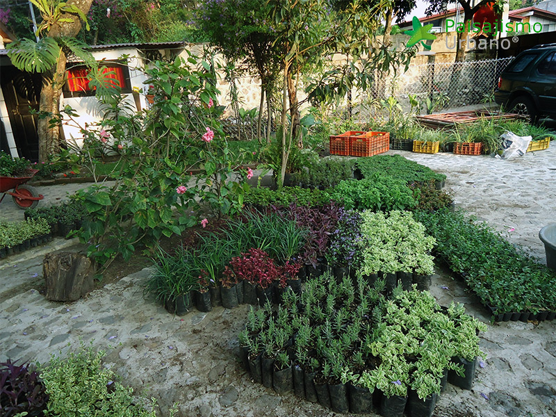 img-jardines-verticales-hotel-porta-del-lago-guatemala-6