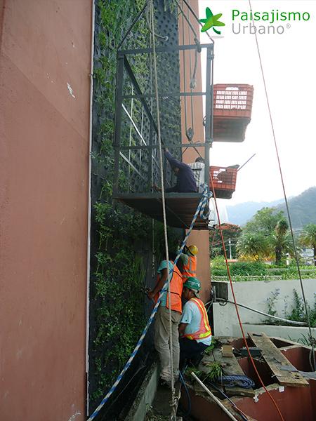 img-jardines-verticales-hotel-porta-del-lago-guatemala-7