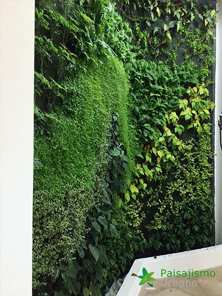 img-jardines-verticales-hotel-tikal-futura-guatemala-11