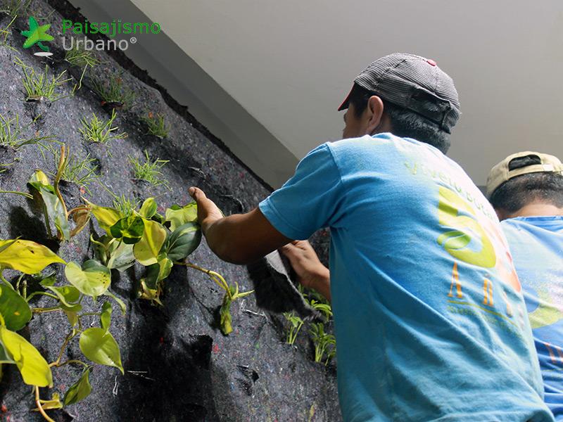 img-jardines-verticales-hotel-tikal-futura-guatemala-4