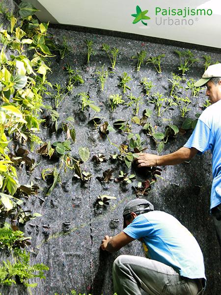 img-jardines-verticales-hotel-tikal-futura-guatemala-6