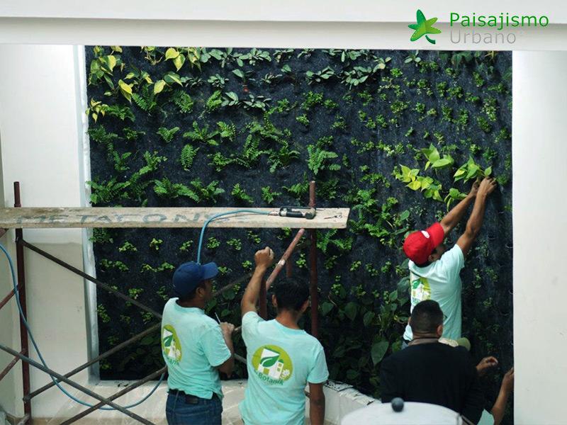 img-jardines-verticales-hotel-tikal-futura-guatemala-7