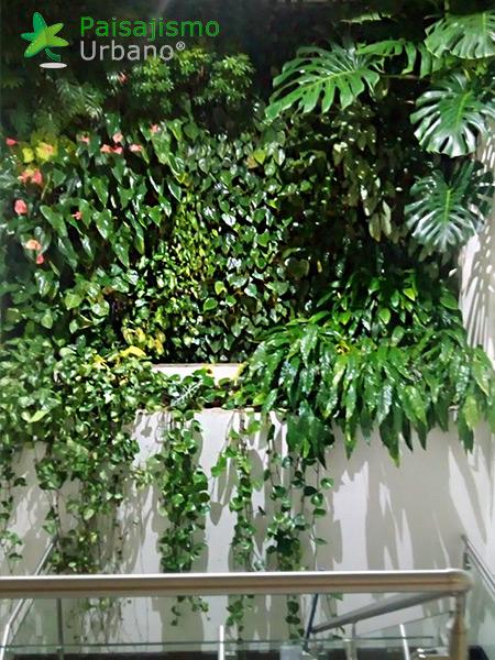 img-jardines-verticales-iglesia-cristo-ebenezer-guatemala-10