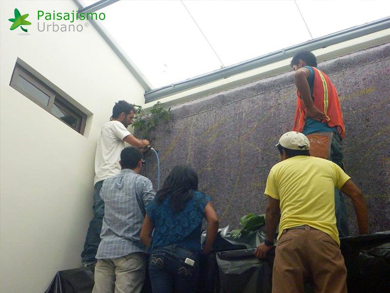 img-jardines-verticales-iglesia-cristo-ebenezer-guatemala-12