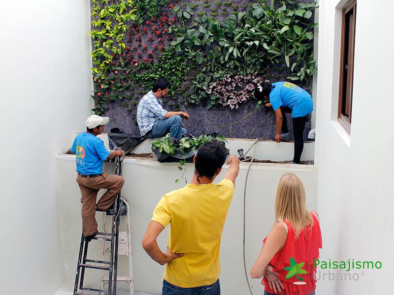 img-jardines-verticales-iglesia-cristo-ebenezer-guatemala-15