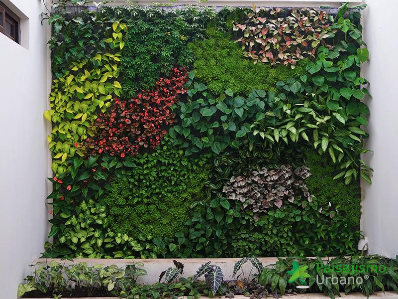 img-jardines-verticales-iglesia-cristo-ebenezer-guatemala-19