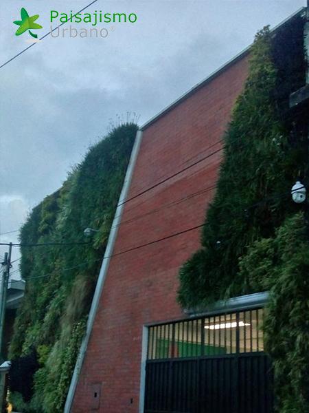 img-jardines-verticales-iglesia-cristo-ebenezer-guatemala-20