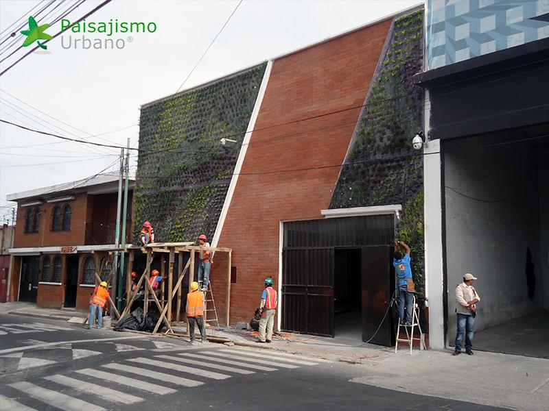 img-jardines-verticales-iglesia-cristo-ebenezer-guatemala-7