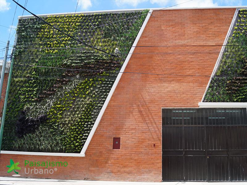 img-jardines-verticales-iglesia-cristo-ebenezer-guatemala-9