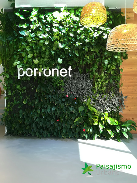 img-jardines-verticales-porronet-elche-12
