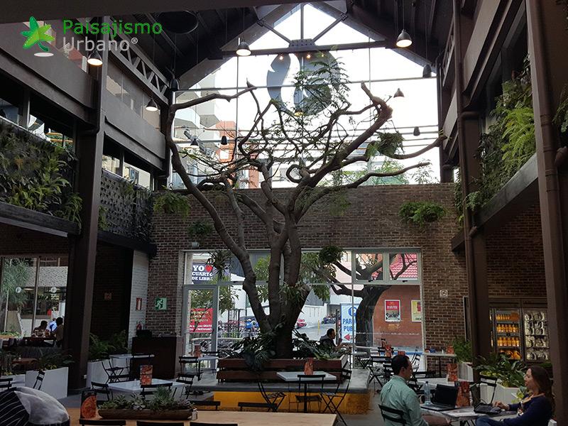 img-jardines-verticales-restaurante-san-martin-zona-10-guatemala-11_1