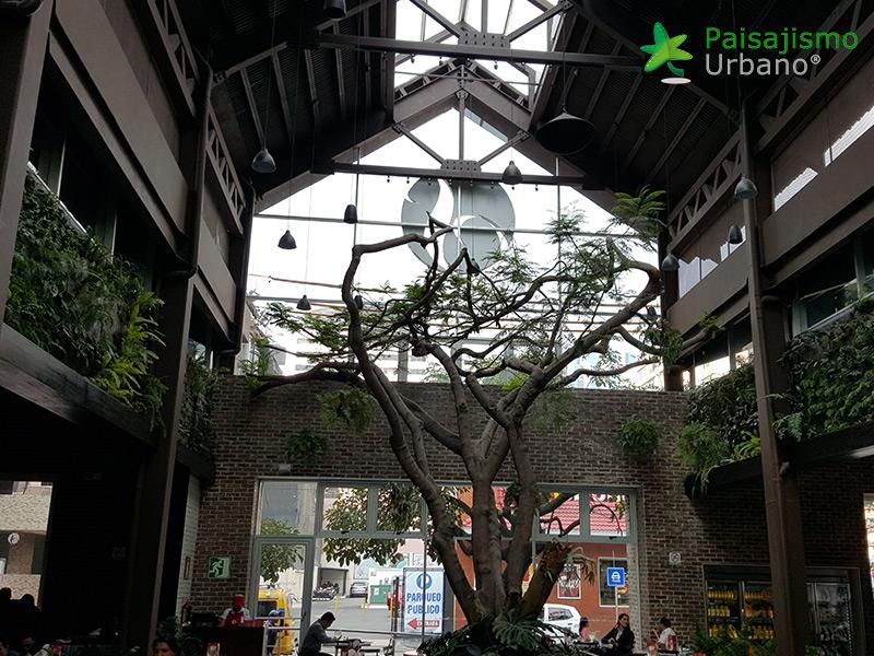 img-jardines-verticales-restaurante-san-martin-zona-10-guatemala-13_1