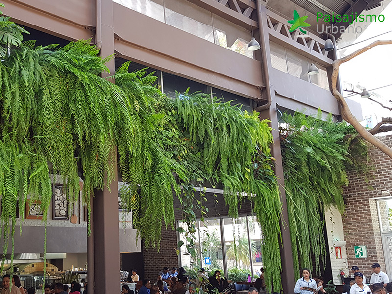 img-jardines-verticales-restaurante-san-martin-zona-10-guatemala-15