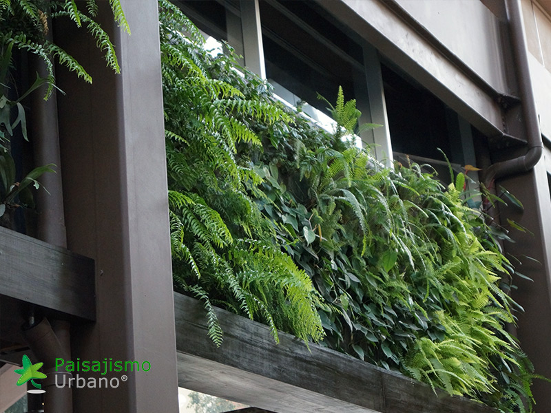 img-jardines-verticales-restaurante-san-martin-zona-10-guatemala-16