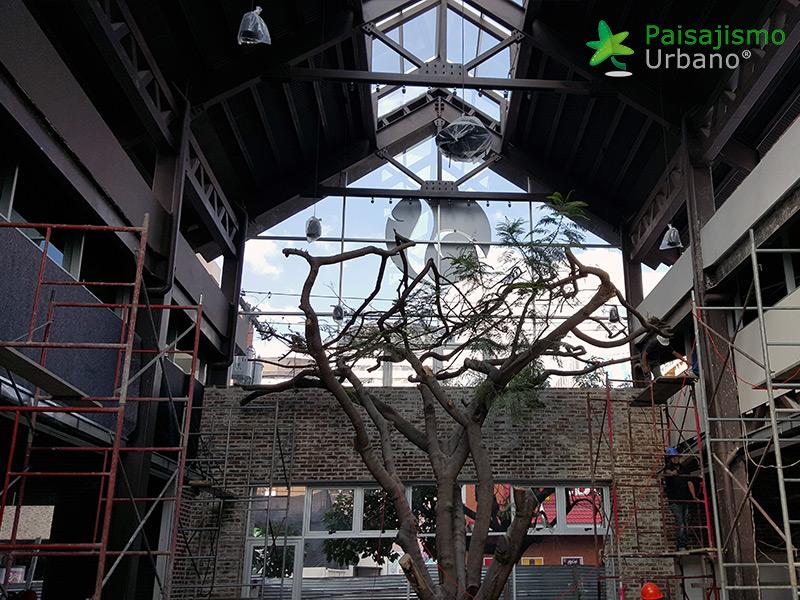 img-jardines-verticales-restaurante-san-martin-zona-10-guatemala-3_1
