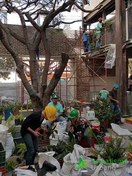 img-jardines-verticales-restaurante-san-martin-zona-10-guatemala-5_1