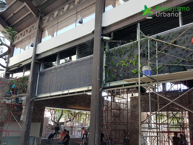img-jardines-verticales-restaurante-san-martin-zona-10-guatemala-6_1