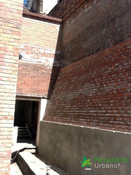 img-jardines-verticales-universidad-cesa-colombia-1