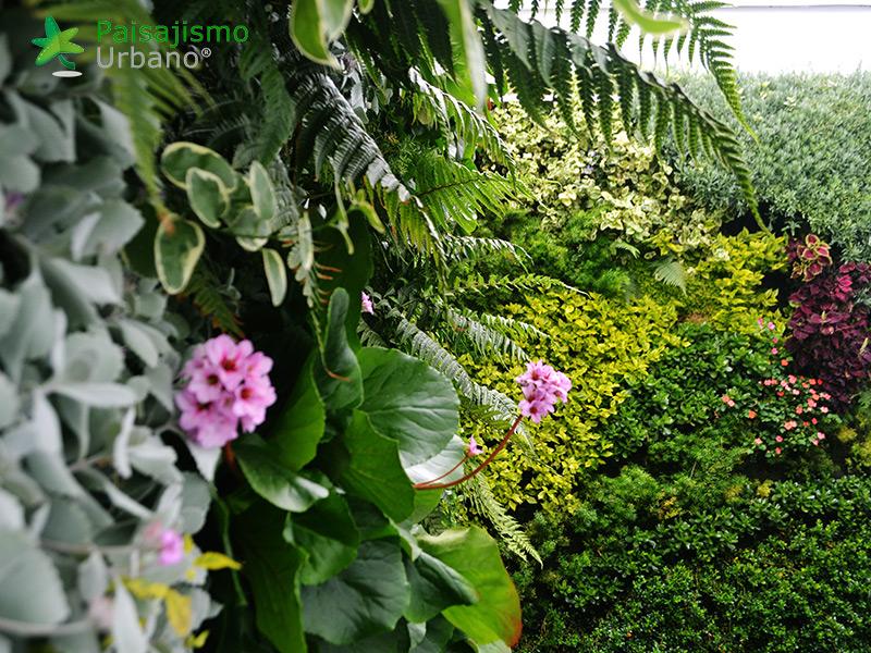 img-jardines-verticales-universidad-cesa-colombia-7